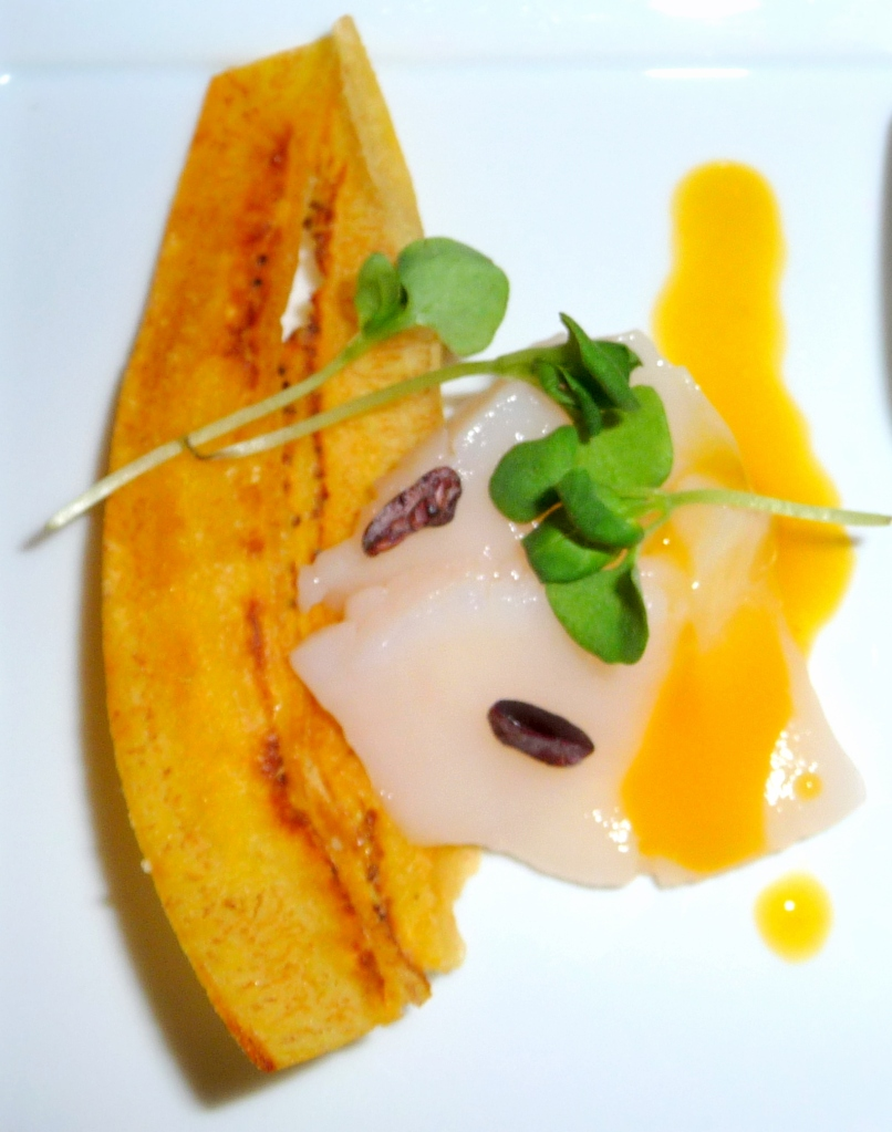 Snapper crudo with plantain